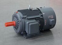 YVFF-H series Frequency conversion three phase adjustment speed asynchronous motor
